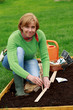 Gardening - woman sowing seeds into the soil