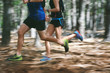 canvas print picture - motion blur forest trail run