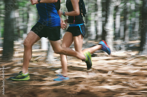 canvas print picture motion blur forest trail run