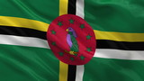 Flag of Dominica waving in the wind - seamless loop