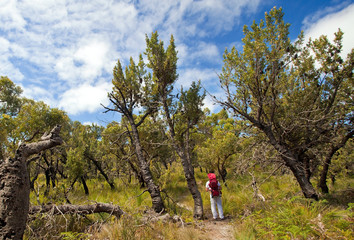 Wilsons Promontory National Park, Victoria, Australia