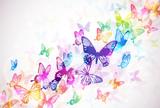 Fototapety 蝶々