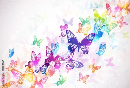 Fototapeta 蝶々