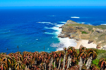 View of Cape of Good Hope, South Africa