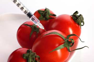 fresh tomatoes  injection