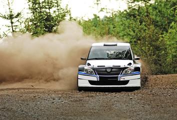 Rally car in action - škoda fabia S2000