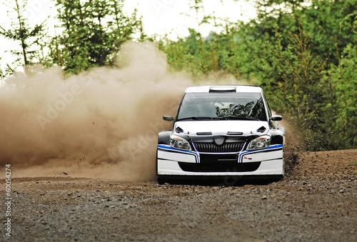 obraz lub plakat Rajd samochodowy w akcji - Škoda Fabia S2000