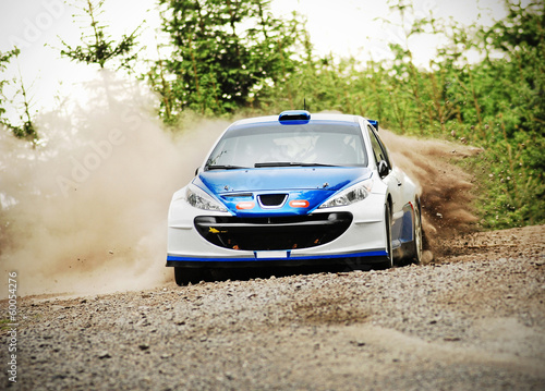 Poster Motorsport Rally car in action - Peugot 206 S2000