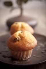 Zwei Muffins - Tiefenunschärfe