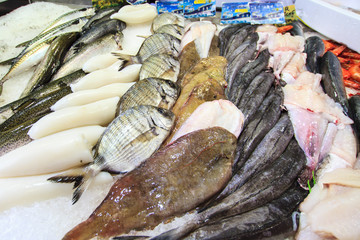 Variation of a fresh fish at the Toulouse fish market