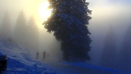 Mountaineers in foggy day.