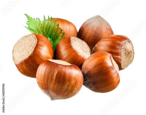 Hazelnut nut closeup isolated on white