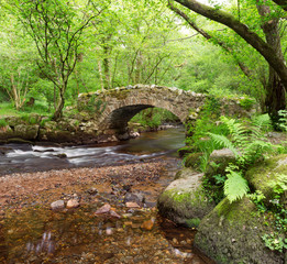 Hisley Bridge,Hisley Wood,Dartmoor Devon Uk