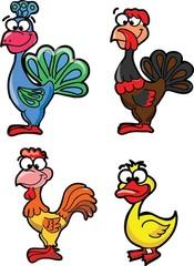 Мультфильм домашние птицы