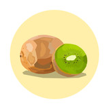 kiwi fruit illustration, yellow circle