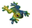 toy frog isolated on the white background