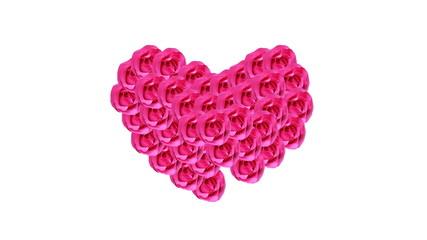 Pink Rose, Valentine concept stop motion