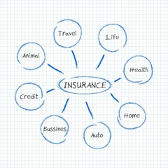 Insurance - infographic
