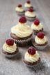 Cupcakes mit frischen Himbeeren