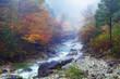 阿寺渓谷の紅葉