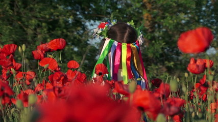 Little girl in traditional clothes in poppy field