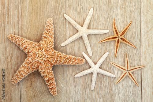 Starfish - 60083607