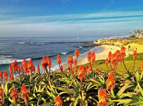 Scenic View of La Jolla Beach San Diego Southern California