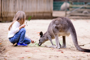 young girl and kangaroo in the zoo