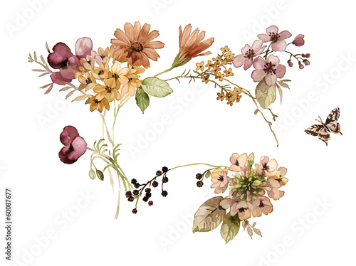 flower design in watercolor