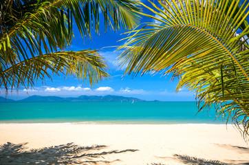 Einsamer Karibischer Traumstrand :)