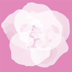 Flower abstract vector EPS10