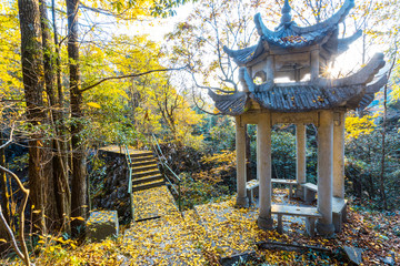 Autumn landscape with pavilion