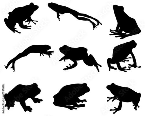 Fototapeta Black silhouettes of frog, vector