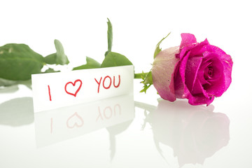 I Love You message with a single pink rose