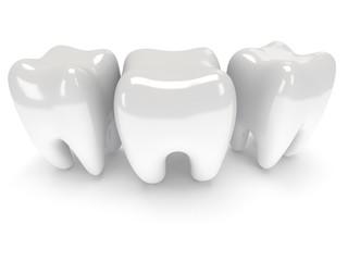 Teeth isolated on white back.