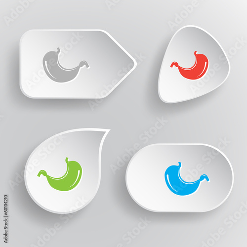 Stomach. White flat vector buttons on gray background.