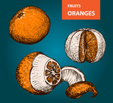 Oranges - set of vector illustration