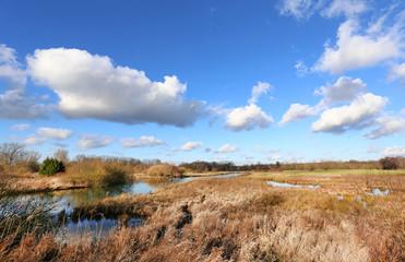 Sumpfland bei Hamm / Westfal