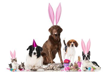Tierische Ostern