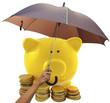 concept protection de l'épargne, période de crise