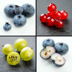 Berries, collage: blueberry, gooseberry and red currant