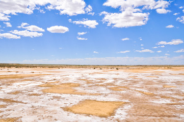 Salt desert near lake Eyre South (Australia)