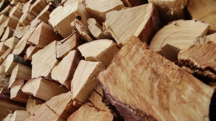 Large Pile of Firewood