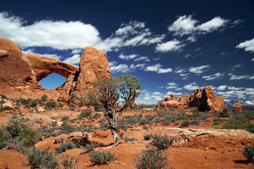 Arches National Park, Utah , USA
