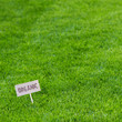 Lush green grass background with Organic sign