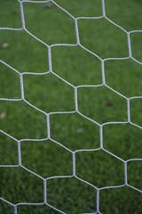 Football net on green grass