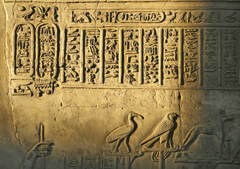 Egyptian hieroglyphics and reliefs at Temple of Kom Ombo, Egypt