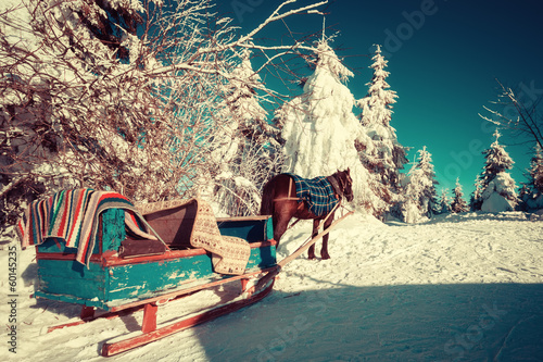 Horse and sleigh in the Ukrainian Carpathians