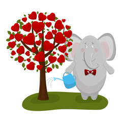 the elephant waters a love tree