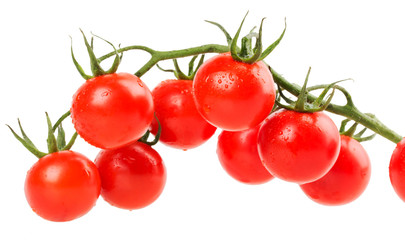 hanging tomatoes on white background
